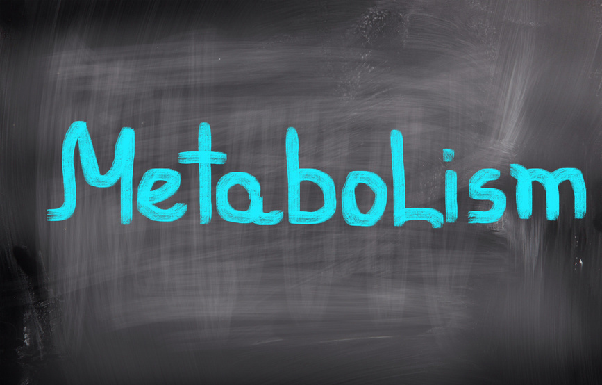 Is my metabolism broken?
