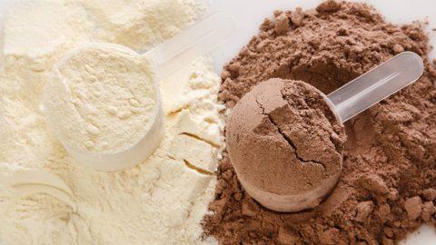 Protein – should I use a powder?